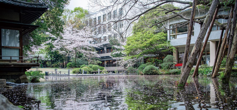 春の浮月楼庭園を満喫